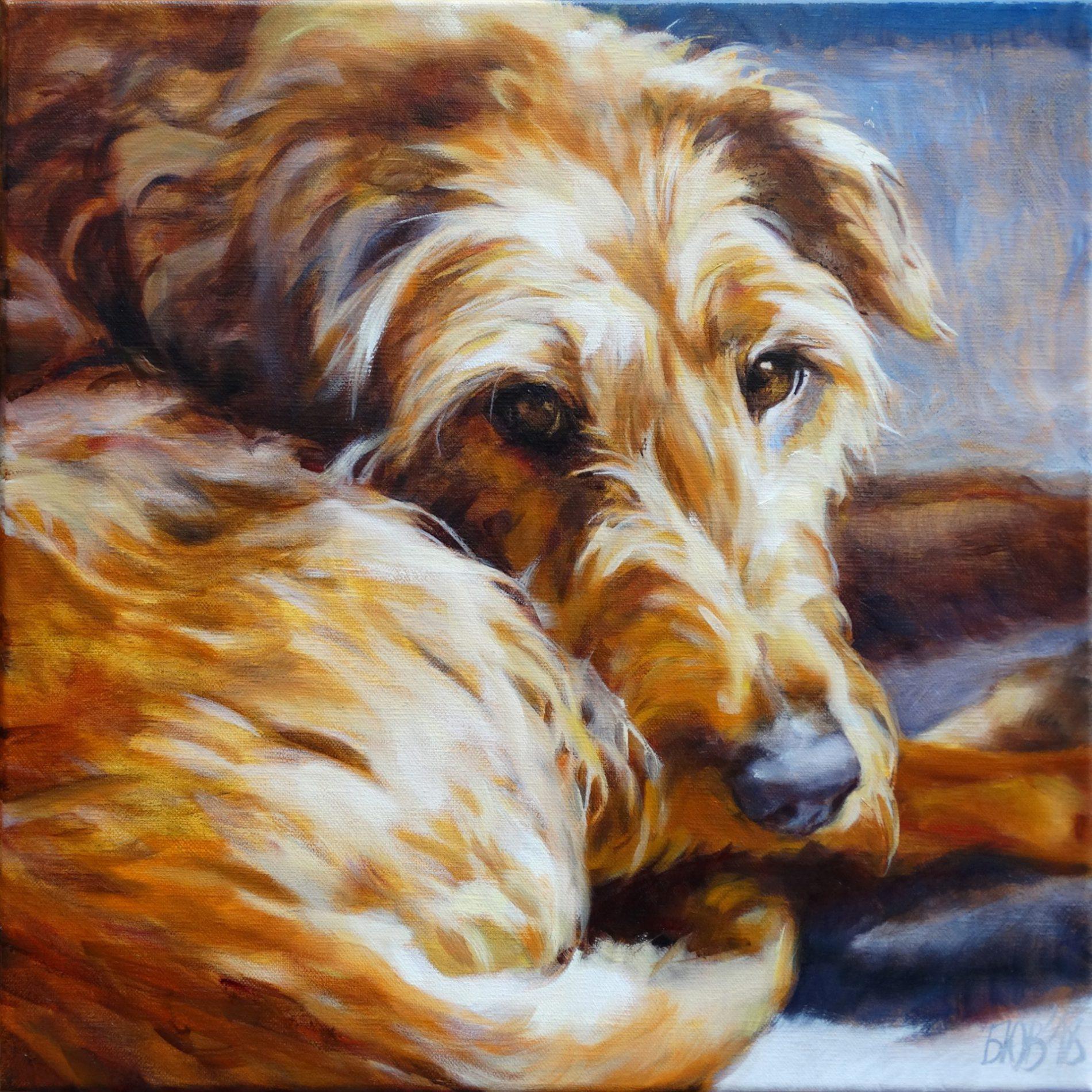 Gemälde von Julia Belot: Tierportrait, Mary, Öl auf Leinwand, 40 cm x 40 cm, 2018