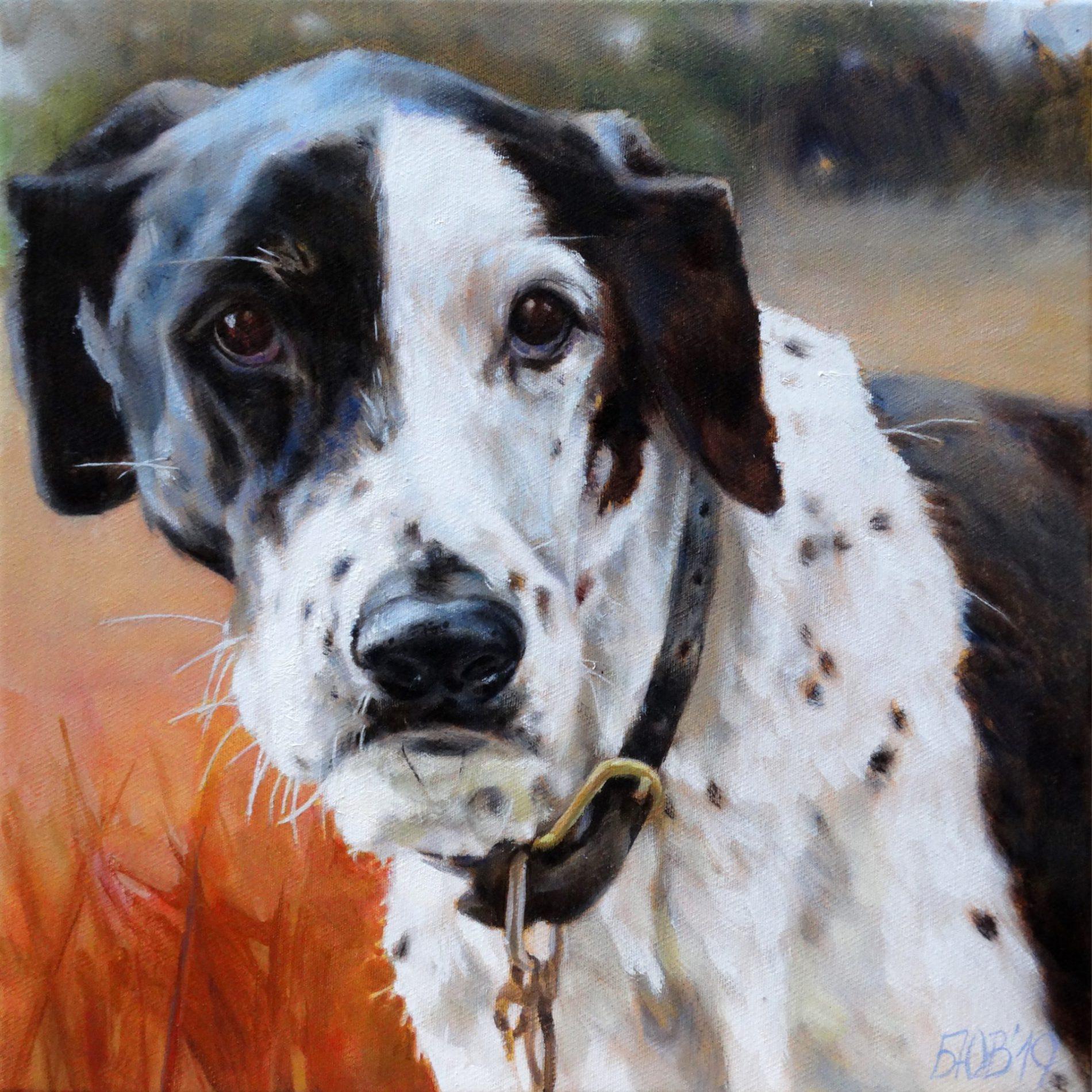 Gemälde von Julia Belot: Tierportait, Paul, Öl auf Leinwand, 35 cm x 35 cm, 2019